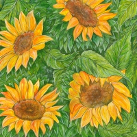 sunflowers-small